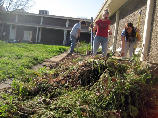 Geniel Capps in foreground, Stephanie Shokrikhanegah on the right and, Brandon Hurd on the left, begin the Spring clean up. (Photo: Jake Shafer)