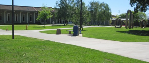 An empty campus during peak hours. (Photo: Capa Lo | The Prospector)