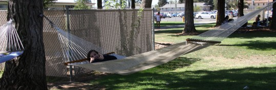 Student relaxing on a hammock.