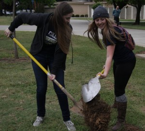 Below: ASYC President Casee Wieber and Brielle West plant a tree for Earth Day.