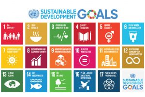 UN graphic of the 17 Sustainable Development Goals