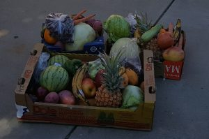 Donated produce collected by WFWA volunteers for sorted into distribution boxes for members.